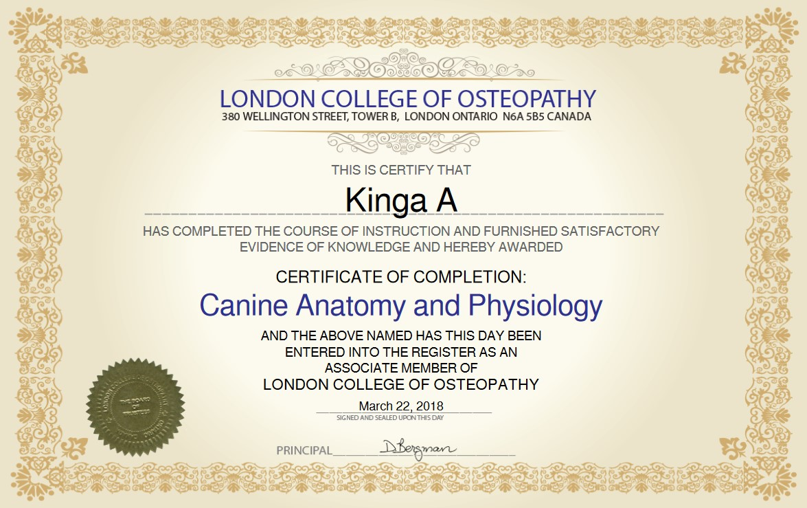 Canine Anatomy And Physiology Online Canine Anatomy Physiology