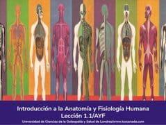 Anatomia y Fisiologia Humana, Lección 1 del curso online Anatomía y Fisiología Aplicada -Curso Online.