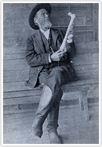 Andre Taylor Still Founder of Osteopathy