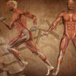 Biomechanics Online Course in London College Osteopathy